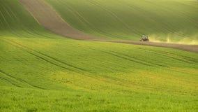 Landwirtschaft auf Moray Rolling Hills mit Weizenfilds und -traktor Lizenzfreie Stockbilder