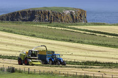 Landwirtschaft - Ballycastle - Nordirland Stockfotografie