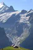 Landwirtschaft in den hohen Bergen von der Schweiz Lizenzfreie Stockbilder