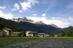 Landwirtschaft in der Schweiz Lizenzfreies Stockbild