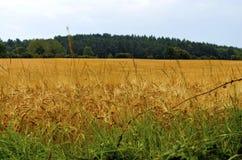 Landwirtschaft in Deutschland stockbild