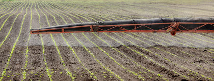 Landwirtschaft, Feldsprühen Lizenzfreies Stockbild