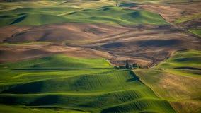 Landwirtschaft im Palouse stockbild