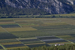 Landwirtschaft im Sarca-Tal Stockfoto