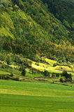 Landwirtschaft im Vulkan #1 Stockfotografie