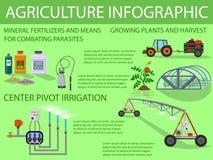 Landwirtschaft Infographic Flache Illustration des Vektors vektor abbildung