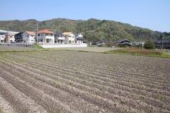 Landwirtschaft in Japan Lizenzfreies Stockbild
