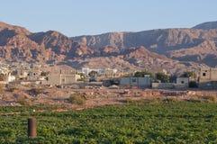 Landwirtschaft in Jordan Valley stockbild