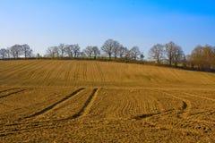 Landwirtschaft Landspace Lizenzfreie Stockfotografie