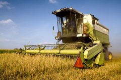 Landwirtschaft - Mähdrescher Stockbild