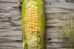 Landwirtschaft, Mais von einem Gemüsegarten, eine unausgereifte Frucht, die Draufsicht Lizenzfreie Stockfotografie