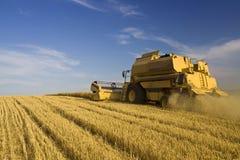 Landwirtschaft - Mähdrescher Lizenzfreies Stockbild
