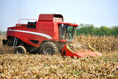Landwirtschaft - moderner Mähdrescher lizenzfreies stockfoto