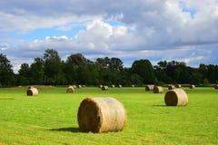 Landwirtschaft in Oxford II Stockbild