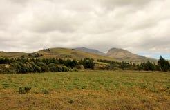 Landwirtschaft und große Höhe, die im Ecuadorian Anden, Ecuador bewirtschaften Stockfotos