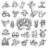 Landwirtschaft und Landwirtschaftikonen Lizenzfreie Stockbilder