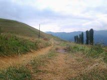Landwirtschaft und Wälder Stockfotos
