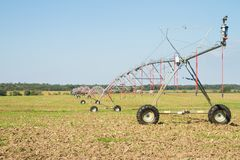 Landwirtschaft von Bewässerung mit Gelenk-Sprinkleranlage Lizenzfreies Stockbild