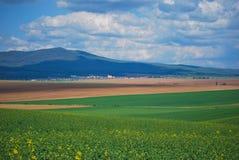 Landwirtschaft von Landschaft Stockfoto