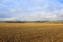 Landwirtschaft von Landschaft Lizenzfreies Stockbild