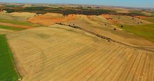 Landwirtschaft von Landschaft von der Luft stock footage