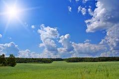 Landwirtschaftfeld Stockfoto