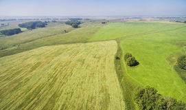 Landwirtschaftliche Anlagen Lizenzfreie Stockbilder
