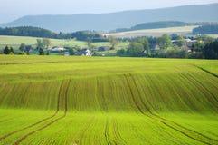 Landwirtschaftliche Ansicht Stockbilder