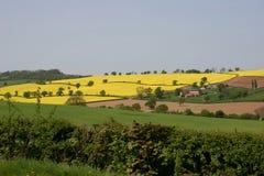 Landwirtschaftliche Ansicht Lizenzfreies Stockfoto