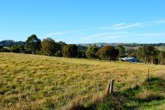 Landwirtschaftliche australische Landschaft Lizenzfreie Stockfotografie