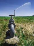 Landwirtschaftliche Bewässerungssysteme stockbilder