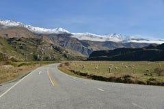Landwirtschaftliche Datenbahn Neuseeland Lizenzfreie Stockfotos