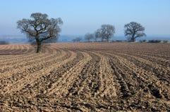 Landwirtschaftliche englische Winterlandschaft Stockfotos