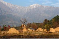 Landwirtschaftliche entferntlandwirtschaft im Fernhimalaja Indien Stockfotos