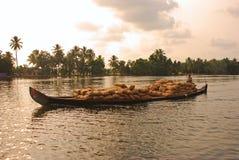 Landwirtschaftliche Ernte auf hölzernem Boot Lizenzfreies Stockbild