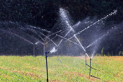 Landwirtschaftliche Feldbewässerung Stockbild