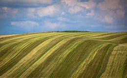 Landwirtschaftliche Felder Stockbilder