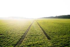 Landwirtschaftliche Felder Frühlingszeit… Rosenblätter, natürlicher Hintergrund Spuren im Land vom Traktor Sonnenuntergang Stockfotografie