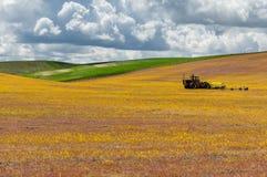 Landwirtschaftliche Felder mit Traktor Stockfotografie