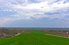 Landwirtschaftliche Felder nahe der Donau im Vorfrühling Stockbild
