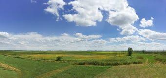 Landwirtschaftliche Felder und blauer Himmel in Krasnodar-Region Stockfoto