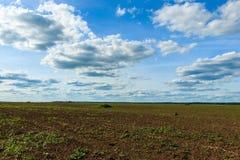 Landwirtschaftliche Felder und blauer Himmel mit Wolken Lizenzfreies Stockbild