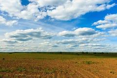 Landwirtschaftliche Felder und blauer Himmel mit Wolken Stockfotografie