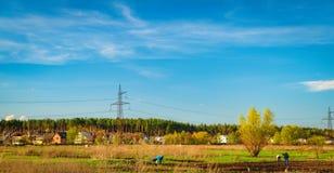 Landwirtschaftliche Felder und Stadt auf Horizont, Ukraine Lizenzfreie Stockfotografie