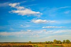 Landwirtschaftliche Felder und Wald auf Horizont, Ukraine Stockfotos