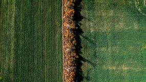 Landwirtschaftliche Felder von oben Vogel ` s Augenansicht lizenzfreies stockfoto