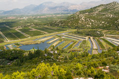 Landwirtschaftliche Feldvogelperspektive Kroatien Stockbilder