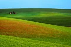 Landwirtschaftliche Frühlingslandschaft stockbild