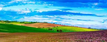 Landwirtschaftliche Frühlingslandschaft stockfoto