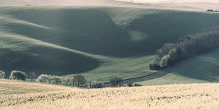 Landwirtschaftliche Frühlingslandschaft der Weinlese Lizenzfreies Stockfoto